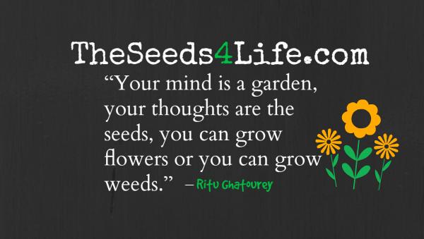 seeds4life